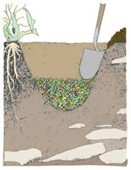 Clip art depicting the soil incorporation composting method.