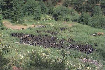 Huge piles of tires laying in the wilderness.