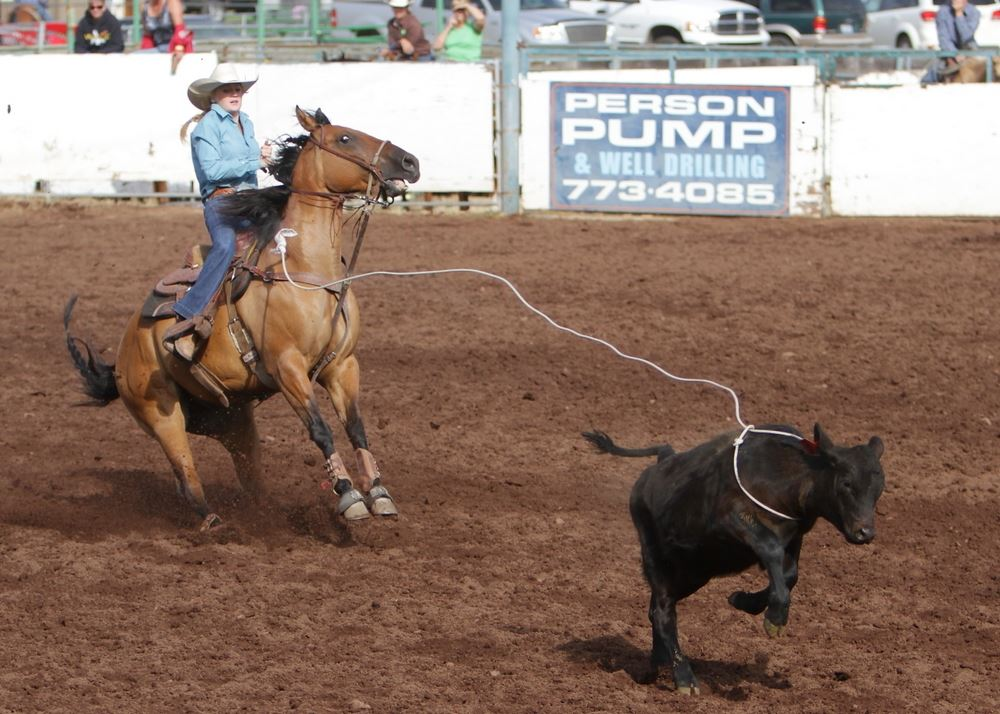 A woman lassos a  calf in the arena at the 2014 Klickitat County Fair.