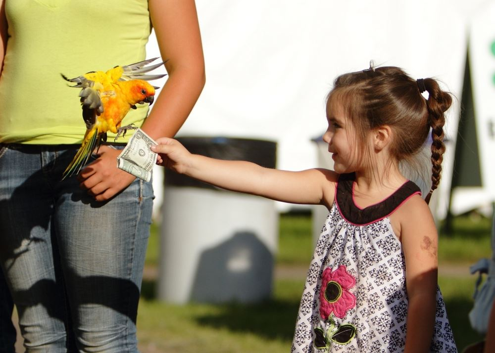 A little girl hands a dollar to a parrot at the 2014 Klickitat County Fair.