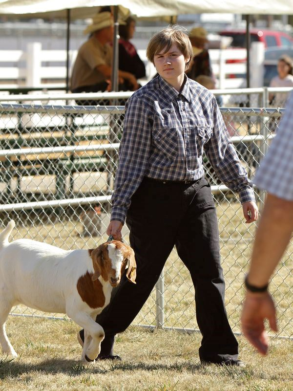 A girl shows her goat at the 2015 Klickitat County Fair.