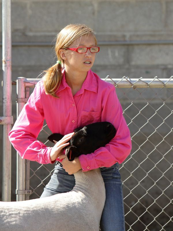 A girl holds and pets the head of her show sheep.