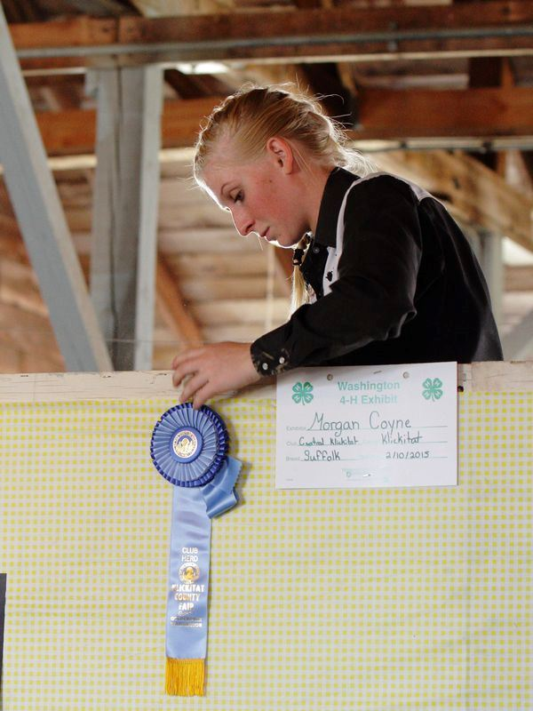 A girl is pictured standing next to her blue ribbon at the 2015 Klickitat County Fair.