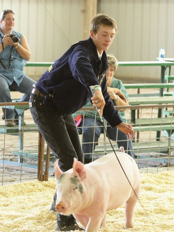 Young man shows a pink pig.