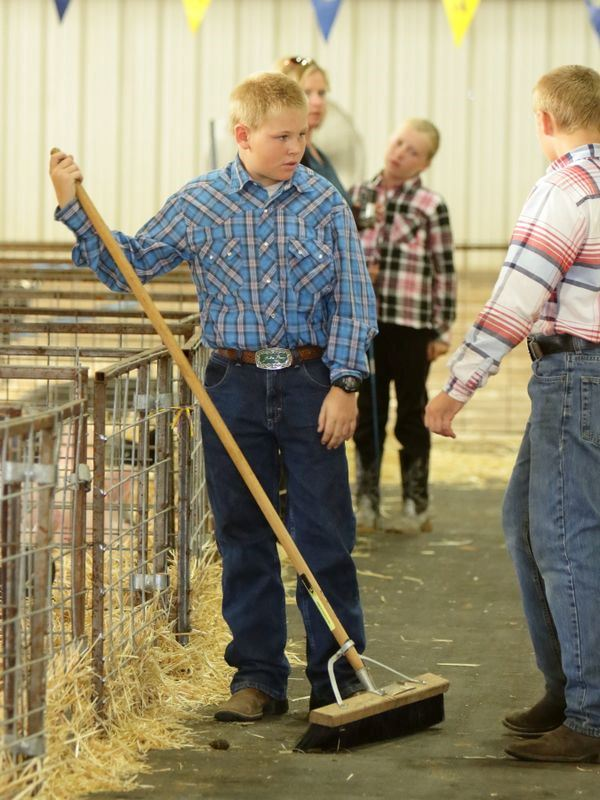 Boy sweeps up the animal barn pen area.