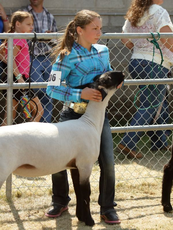 A young girl stands next to her sheep during the 2015 Klickitat County Fair.