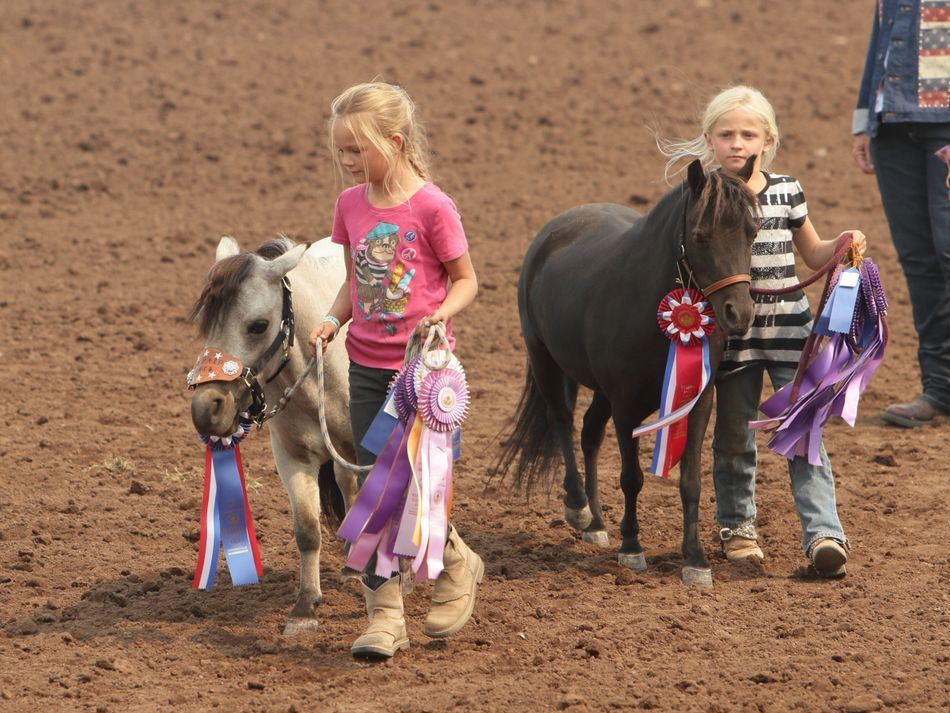 Two little girls hold their ponies by the bridle at the 2015 Klickitat County Fair.