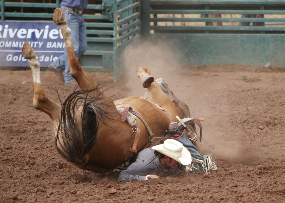 A man is nearly crushed as his horse falls over during the 2014 Klickitat County Fair Rodeo.